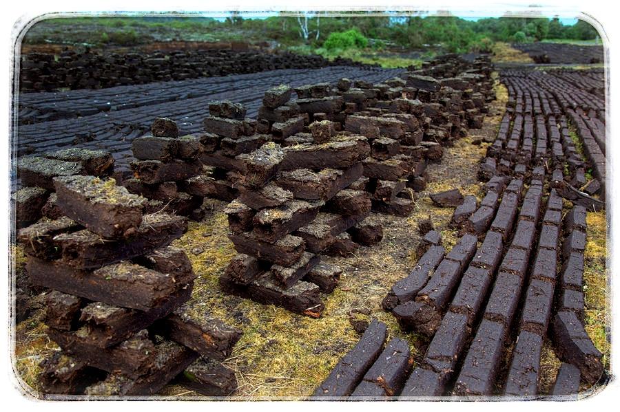 Sušení natěžené rašeliny